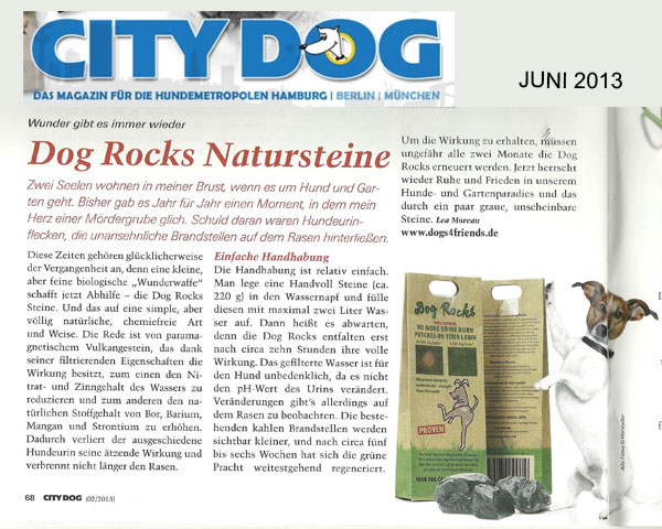 Citydog zu Dog Rocks